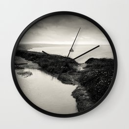 puddle and pond Wall Clock