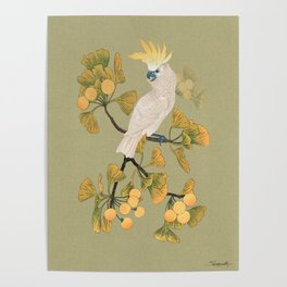Cockatoo and Ginkgo Tree Poster