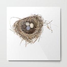 Bird Nest with Stone Eggs Metal Print
