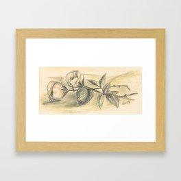 Mom's Flowers Framed Art Print