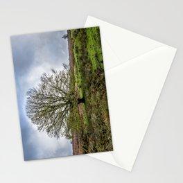 Single Exmoor Tree Stationery Cards