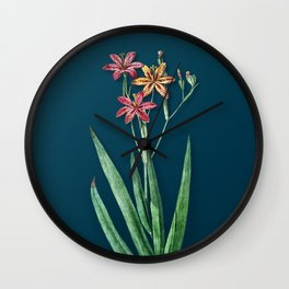 Vintage Blackberry Lily Botanical Illustration on Teal Wall Clock