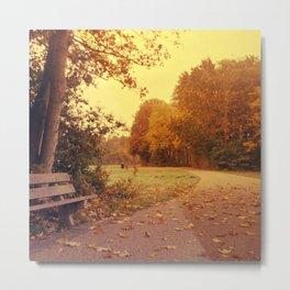 Autumn scenery #3 Metal Print