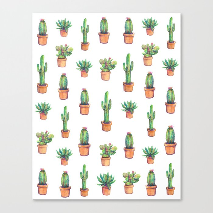 my old caactus are back Canvas Print