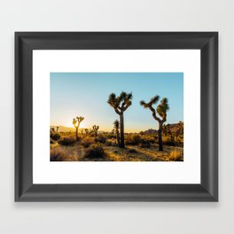Last Light at Joshua Tree Framed Art Print