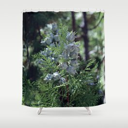 Fores fruits IV Shower Curtain