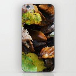 Autumn IV iPhone Skin