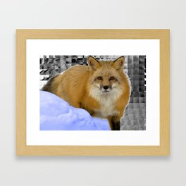 Fox Without Home Framed Art Print