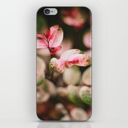 Perfectly spotted plant iPhone Skin
