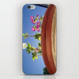 Sky and Flowers iPhone Skin