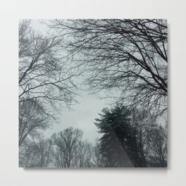 The Trees - Minty & Cool Metal Print
