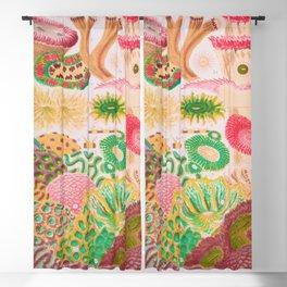Colorful Coral Vintage Sea Life Illustration Blackout Curtain