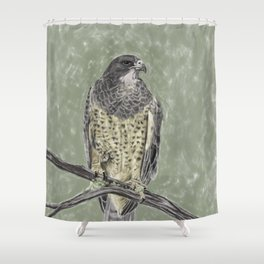 Black-chested buzzard-eagle (Geranoaetus melanoleucus) Shower Curtain
