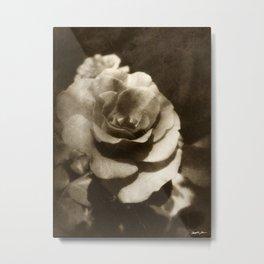 Rosas Moradas 1 Antiqued Metal Print