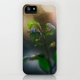 Dreamy Morning. iPhone Case