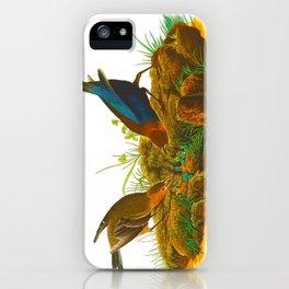 Cowbird Bird Illustration iPhone Case