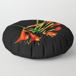 Think Flowers - Unknown? Floor Pillow