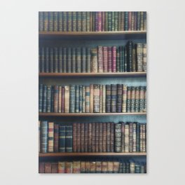old books Canvas Print