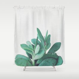 Crassula Shower Curtain