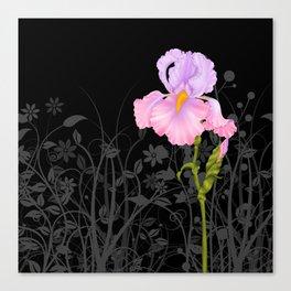 Iris pink mauve Canvas Print