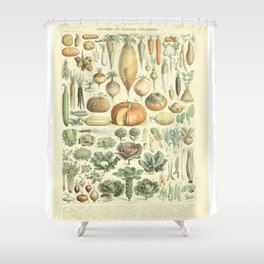 Vegetable Identification Chart Shower Curtain
