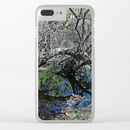 Quiet Litany Clear iPhone Case