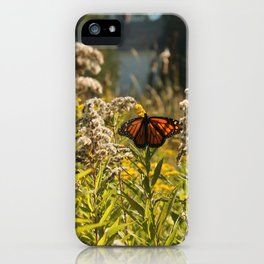 Indian Summer in Maine iPhone Case