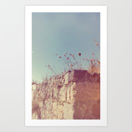 Outer Wall Art Print