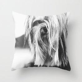 Coiffure - Yorkie - Black and White Throw Pillow