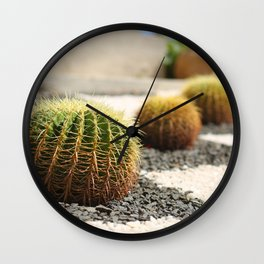 Row of green giant cacti. Outdoor landscape decoration Wall Clock