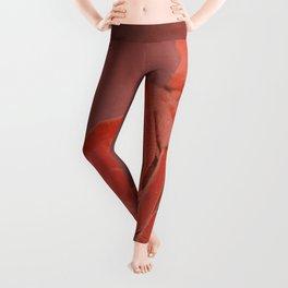 Velvet roses Leggings