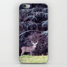 9 Point Buck iPhone & iPod Skin