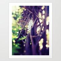 Sunshine through Vines  Art Print