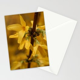 Bloomin' Yellow Stationery Cards