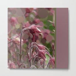 Prairie Smoke blossom (abstract edit) Metal Print