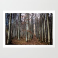Autumn hike Art Print