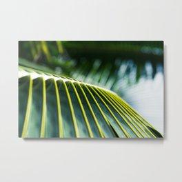 Palm Tree Maui Hawaii Metal Print