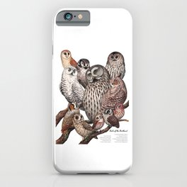 Owls of the Northeast iPhone Case