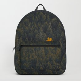 Modern Landscape Photography Single Autumn Tree Pine tree Forest Green Trees Yellow Focal Point Backpack