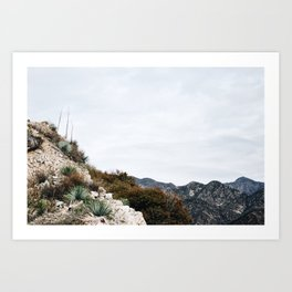 California Series #14 Art Print
