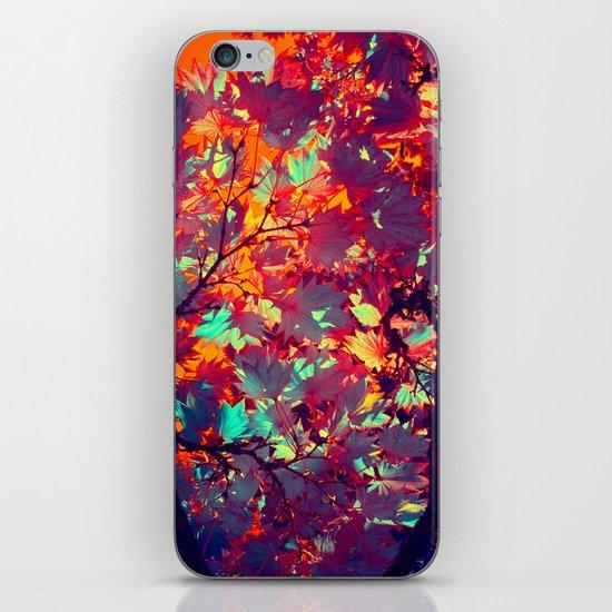 autumn tree X iPhone & iPod Skin