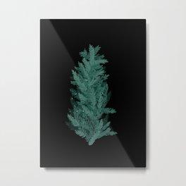 Winter pine bush Metal Print