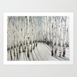 Winter Birch Cresting Shadows Art Print