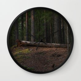 Felled rotten pine tree in the spring forest. Wall Clock
