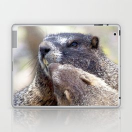 Watercolor Marmots Laptop & iPad Skin