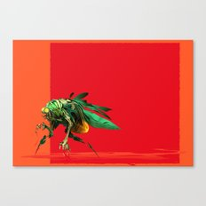 Mad fly Canvas Print