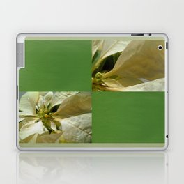 Pale Yellow Poinsettia 1 Blank Q5F0 Laptop & iPad Skin