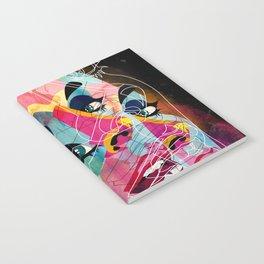 251113 Notebook