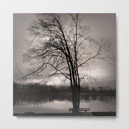 At the Lake. Metal Print