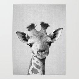 Baby Giraffe - Black & White Poster